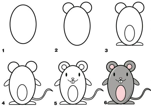 5-6-how-to-draw-animals