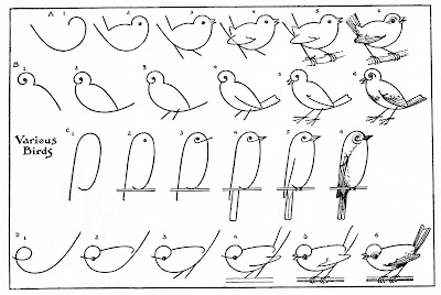 6-6-how-to-draw-animals