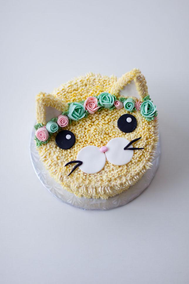 cat cake inspiration