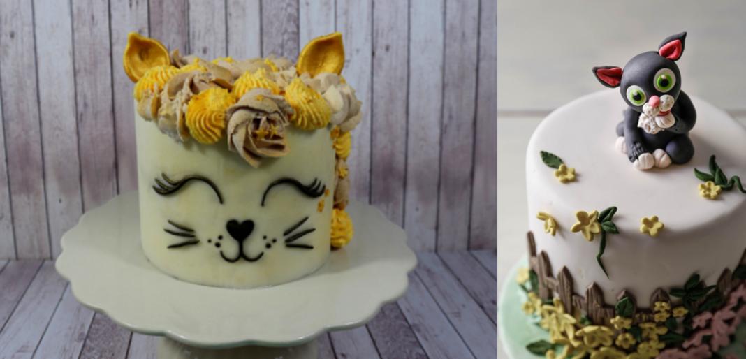 5 cat cakes