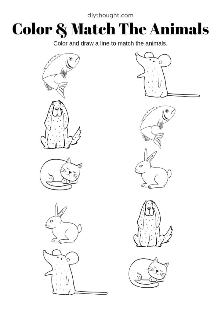 preschool matching animal worksheet.