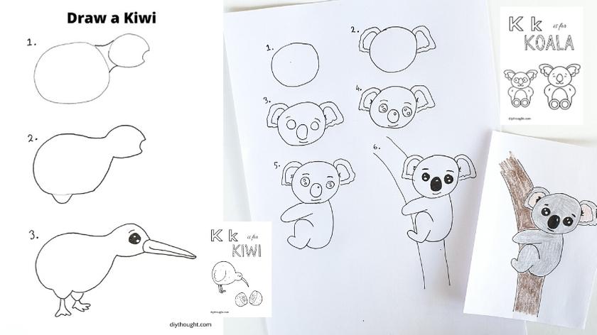 how to draw a kiwi and koala