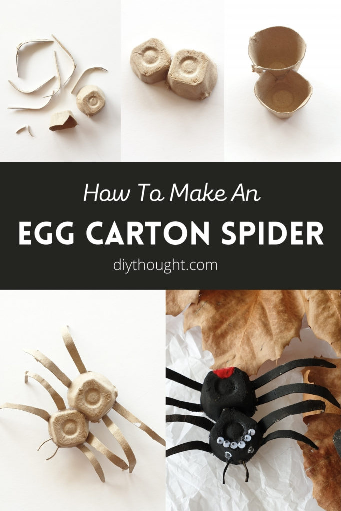 how to make an egg carton spider