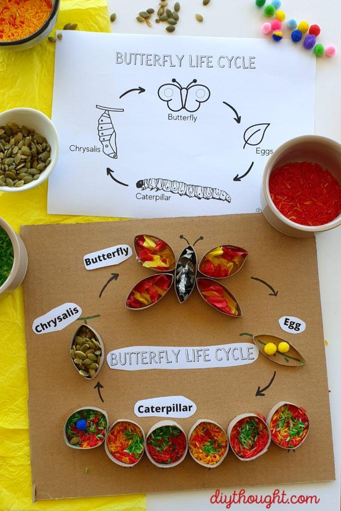 Cardboard Tube Butterfly Life Cycle Sensory Art