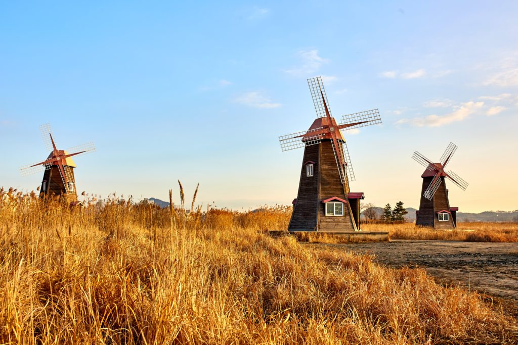 windmill day