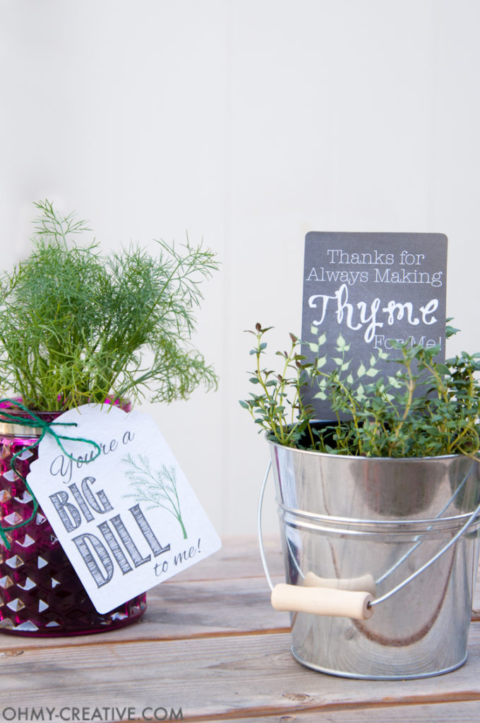 DIY Gifts For Mother's Day- herb with gift tag